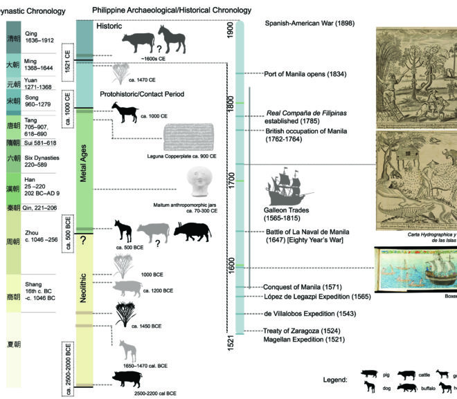 From the First Farmers to the Spanish Empire: 4000 years of animal and plant introductions to the Philippine Archipelago